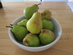 First pears from the tree!