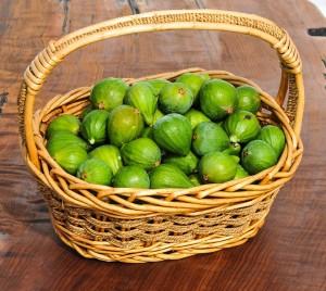 Figs 201
